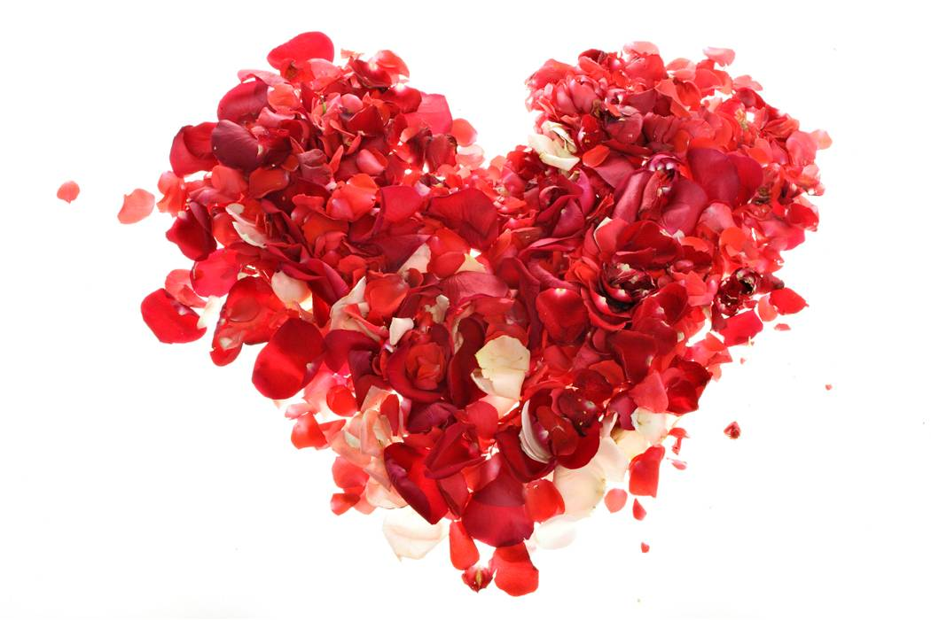 DJs Receive Rose pedals In Shape Of Heart